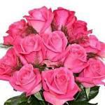 0 roses